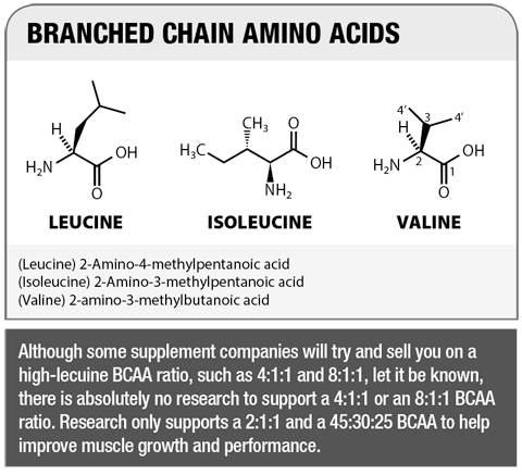 Branched Chain Amino Acids for Muscle Growth and Performance
